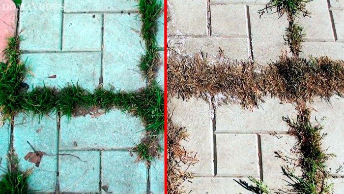 Как очистить тротуарную плитку от травы посредством химикатов