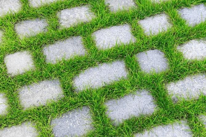 Как убрать траву между тротуарной плиткой